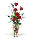Click to order the Half a Dozen Roses